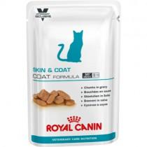 Royal Canin  Skin & Coat Wet 12x100g