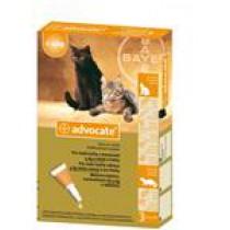 Advocate spot-on roztok - mačky malé 3 x 0,4 ml do 4 kg