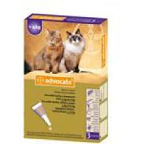 Advocate spot-on roztok - mačky veľké 4-8 kg 3 x 0,8 ml