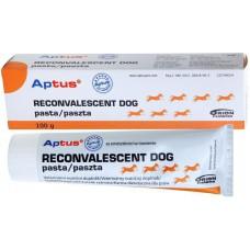 APTUS RECONVALESCENT dog pasta 100g