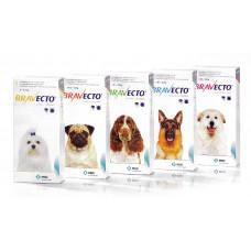 Bravecto 500 mg tableta pre stredne veľké psy (10 - 20 kg)