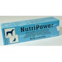 Nutripower energetická pasta 70g